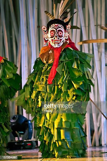 hudoq mask dancer - tee reel bildbanksfoton och bilder