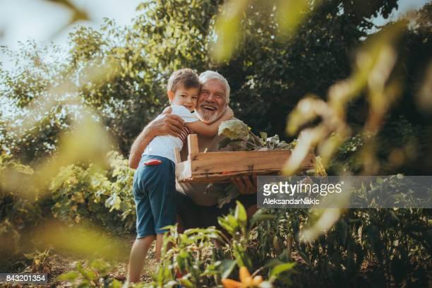 Hug for a gardener
