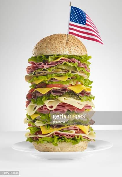 huge american sandwich