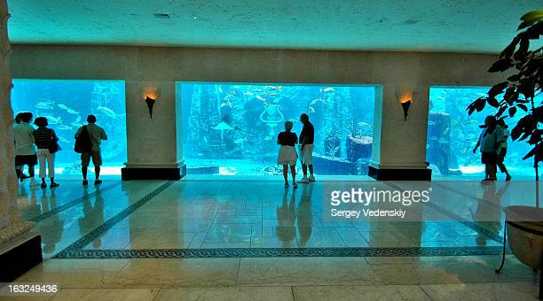 CONTENT] Huge aquarium in the hall of the Atlantis Hotel Resort Paradise Island The Bahamas