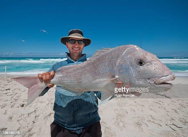 Huge beach snapper