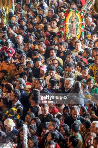 méxico-virgen de guadalupe-misa de peregrinos - festival de la virgen de guadalupe fotografías e imágenes de stock