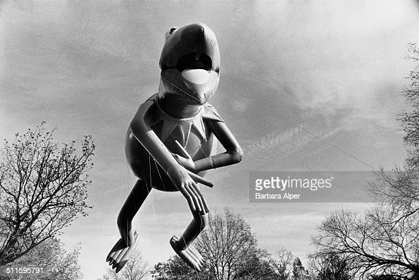A huge inflatable Kermit the Frog in Central Park during the Macy's Thanksgiving Day Parade New York City 22nd November 1990