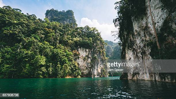 huge limestone cliffs covered in lush green rainforest and jungle, thailand - surat thani province stock pictures, royalty-free photos & images