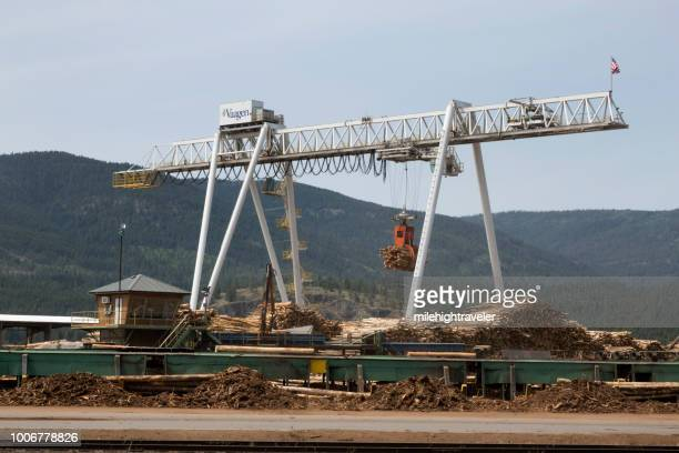 Huge logging industry sawmill crane Colville Washington lumber