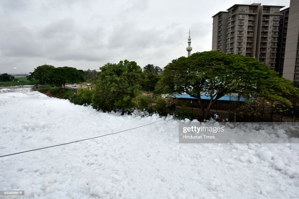 A huge pile of froth on the polluted Bellandur Lake near the residential houses on August 17, 2017 in Bengaluru, India. Rapid urbanisation is taking its toll, between 2001 and 2011, the city's population increased from 6.5 million to 9.6 million, the highest rate of growth of any city in India. The indiscriminate discharge of household waste and industrial effluents into lakes is what causes the toxicity, leading to the water body foaming. According to a report by the Karnataka State Pollution Control Board, of the 67 lakes surveyed in Bengaluru, none had water that was fit for drinking.