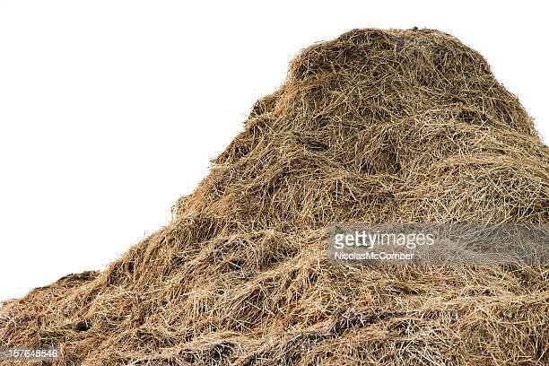Huge pile of hay
