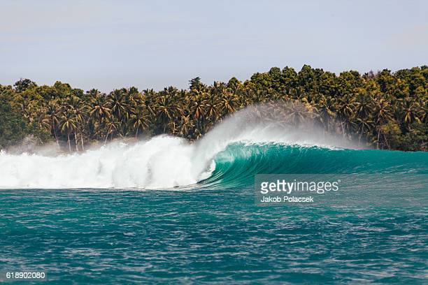 Huge surfing wave breaking in the Mentawai Islands
