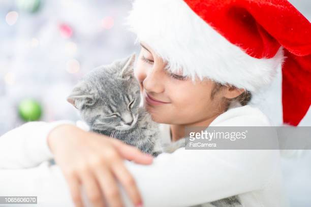 hugging a cat - christmas kittens stock pictures, royalty-free photos & images