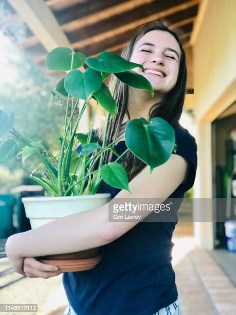 hugging my monstera plant - fensterblatt aroid stock-fotos und bilder