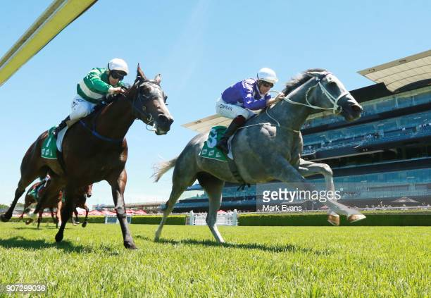 Hugh Bowman on D'Argento wins race 2 during Sydney Racing at Royal Randwick Racecourse on January 20 2018 in Sydney Australia