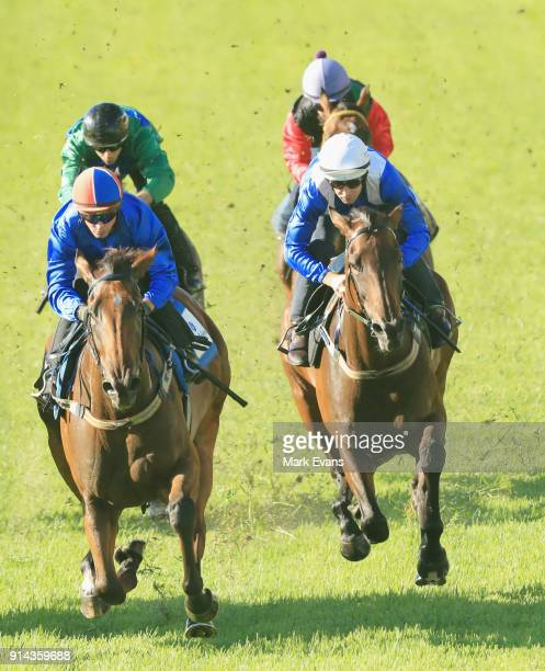 Hugh Bowman on Winx competes in a barrier trial at Rosehill Gardens on February 5 2018 in Sydney Australia