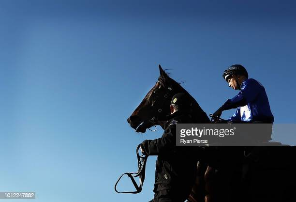 Hugh Bowman on Winx leaves the mounting yard for her barrier trial at Rosehill Gardens on August 7 2018 in Sydney Australia