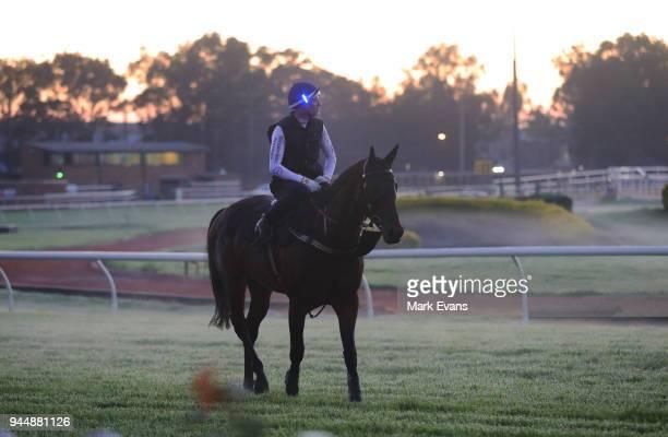 Hugh Bowman on Winx returns from a trackwork session at Rosehill Gardens on April 12 2018 in Sydney Australia