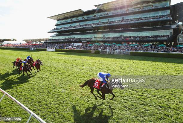 Hugh Bowman on Winx wins race 6 the Colgate Optic White Stakes during Sydney racing at Royal Randwick Racecourse on September 15, 2018 in Sydney,...