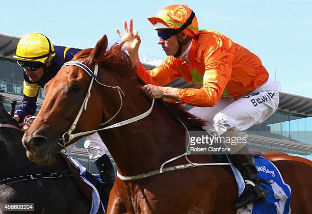 Hugh Bowman rides Terravista to win race six the Darley Classic on Stakes Day at Flemington Racecourse on November 8 2014 in Melbourne Australia