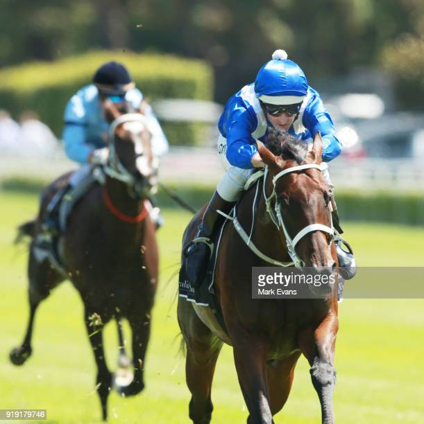 Hugh Bowman rides Winx during a barrier trial on Apollo Stakes Day at Royal Randwick Racecourse on February 17 2018 in Sydney Australia