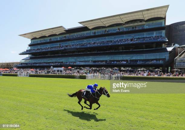 Hugh Bowman rides Winx to win it's barrier trial on Apollo Stakes Day at Royal Randwick Racecourse on February 17 2018 in Sydney Australia