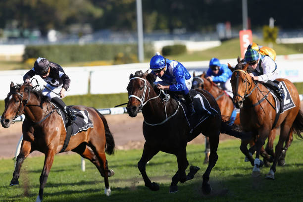 2018 winx stakes tips warwick stakes field betting advice