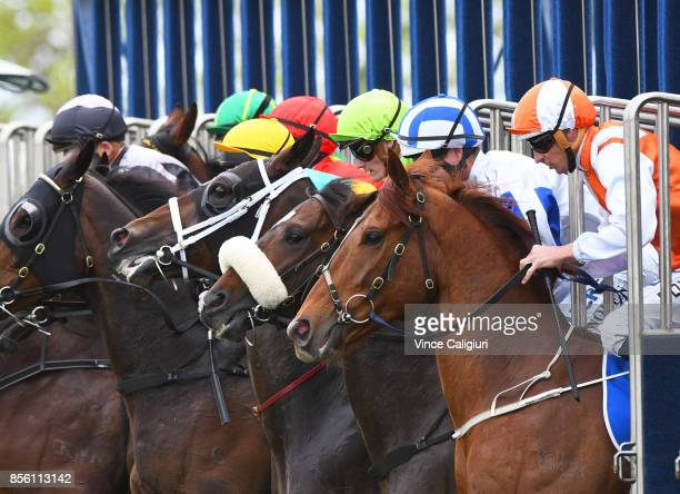 Hugh Bowman riding Lycurgus Luke Nolen riding Hardham and Regan Bayliss riding So Belafonte at barrier start of Race 3 during Melbourne Racing at...
