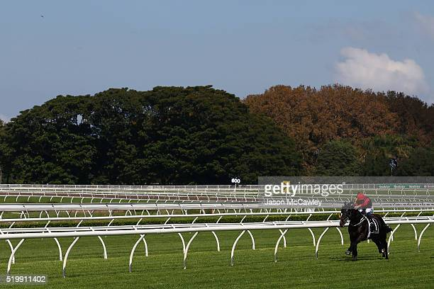 Hugh Bowman riding Prized Icon wins Race 1 in the TFE Hotels Fernhill Handicap during Queen Elizabeth Stakes Day at Royal Randwick Racecourse on...