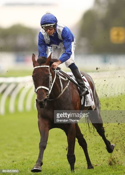 Hugh Bowman riding 'Winx' leads the field in Race 5 China Horse Club George Ryder during 2017 Golden Slipper Day at Rosehill Gardens on March 18 2017...