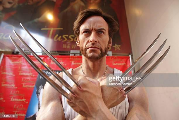 "Hugh Jackman's ""Wolverine"" wax figure at Madame Tussauds on September 4, 2009 in New York City."