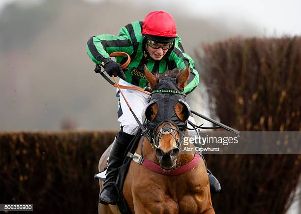 Hugo Hunt riding Johnny Og clear the last to win The Thames Materials Amateur Riders' Handicap Steeple Chase at Ascot racecourse on January 23 2016...