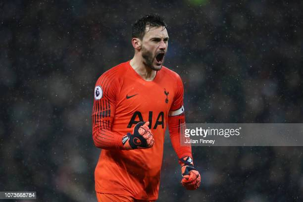 Hugo Lloris of Tottenham Hotspur celebrates after teammate Christian Eriksen scores their team's first goal during the Premier League match between...
