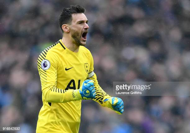 Hugo Lloris of Tottenham Hotspur celebrates his side's first goal during the Premier League match between Tottenham Hotspur and Arsenal at Wembley...
