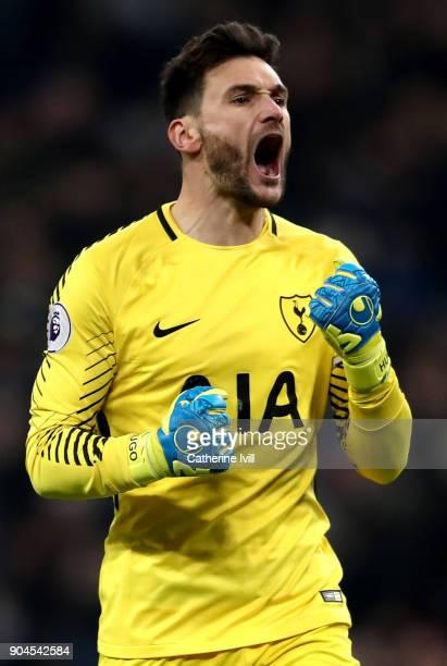 Hugo Lloris of Tottenham Hotspur celebrates his sides third goal during the Premier League match between Tottenham Hotspur and Everton at Wembley...