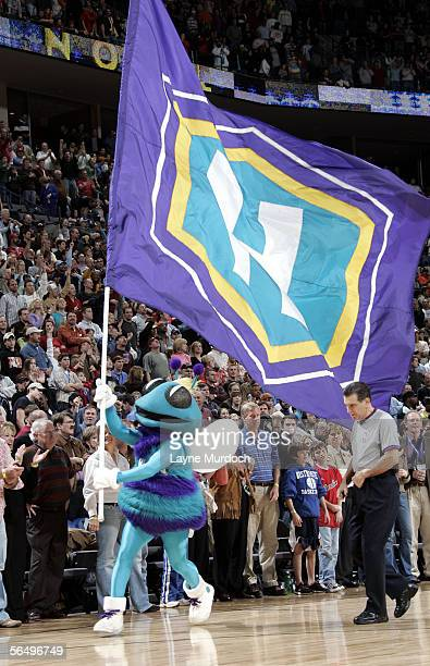 Hugo mascot for the New Orleans/Oklahoma City Hornets celebrates the Hornets victory over the Houston Rockets at the Ford Center on December 28 2005...