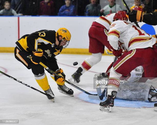 Hugo Reinhardt of the American International Yellow Jackets watches the puck bounce in front of the goal during his team's NCAA Division I Men's Ice...