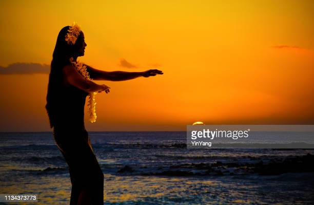 hula dancer on hawaiian beach at sunset with copy space - hawaiian lei stock pictures, royalty-free photos & images