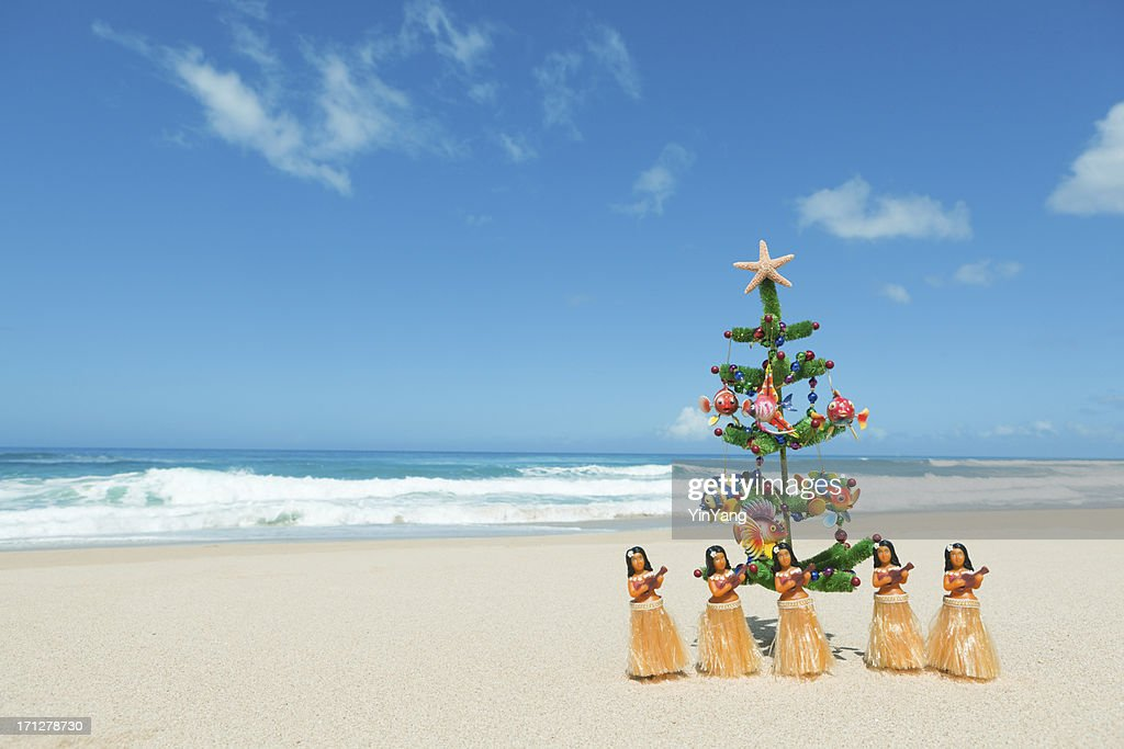 Hawaii Christmas.World S Best Hawaii Christmas Stock Pictures Photos And