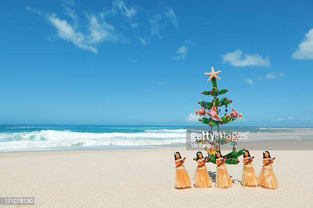 hula dancers and christmas tree in tropical hawaiian beach hz - hawaii christmas stock pictures, royalty-free photos & images