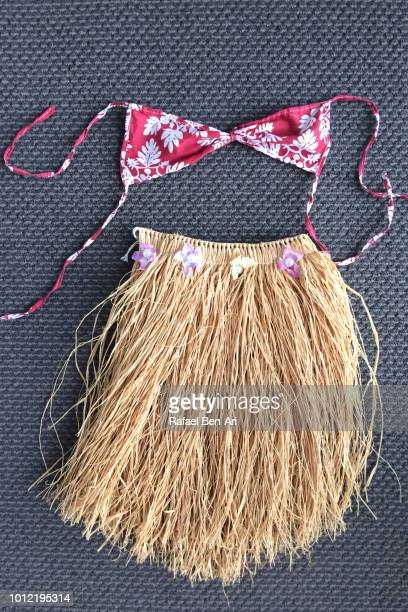 Hula Girl Dress Dress up Costume