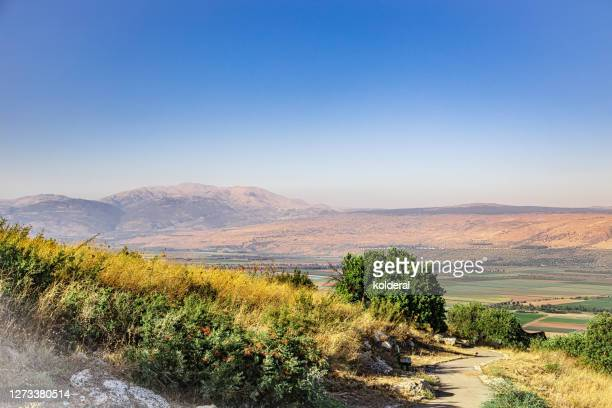 hula valley in northern israel with distant view of golan heights and mount hermon - midday stock pictures, royalty-free photos & images