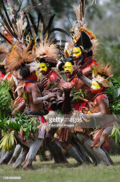 Huli Wigmen from the Tari Valley at a Sing-sing Mt Hagen, Southern Highlands, Papua New Guinea Wearing bird of paradise feathers and plumes...
