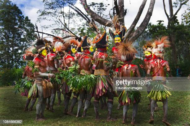 Huli Wigmen from the Tari Valley in the Southern Highlands of Papua New Guinea, at a Sing-sing Mt Hagen Wearing bird of paradise feathers and plumes...