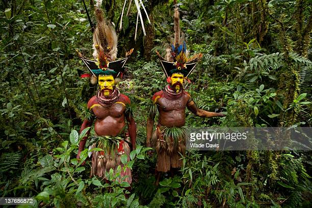 Huli Wigmen in the forests of the Southern Highlands Papua New Guinea 2010