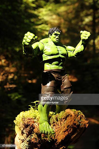 Hulk e floresta