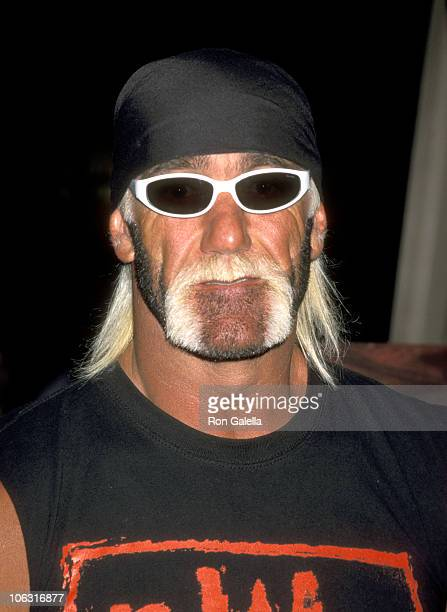 Hulk hogan video software dealers stock photos and pictures hulk hogan during 1999 video software dealers association convention july 8 1999 at los angeles convention pmusecretfo Gallery