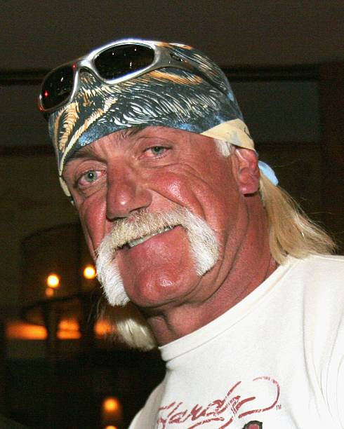 Hulk hogan films-4965