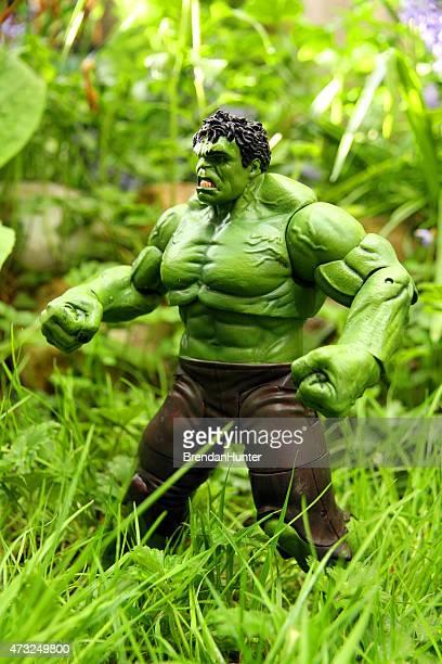 Hulk na selva