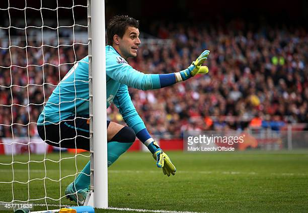 Hull goalkeeper Eldin Jakupovic during the Barclays Premier League match between Arsenal and Hull City at Emirates Stadium on October 18 2014 in...