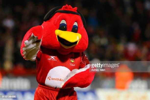 Hull KR's mascot Rufus during the BetFred Super League match between Hull KR and Catalans Dragons at KCOM Craven Park on February 15 2018 in Hull...