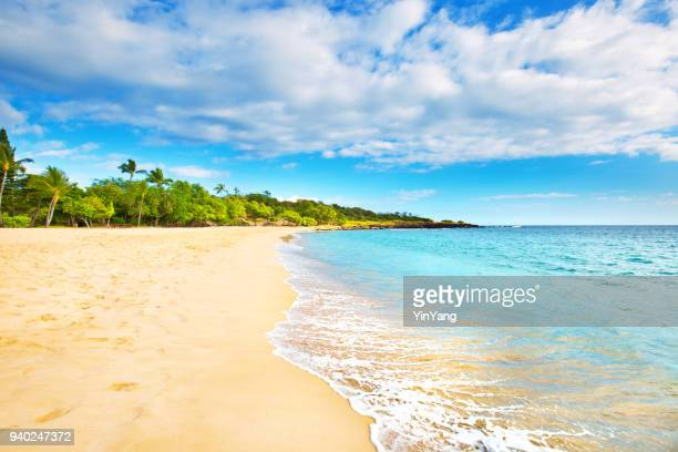 hulopoe beach of lanai island in hawaii - beach stock pictures, royalty-free photos & images