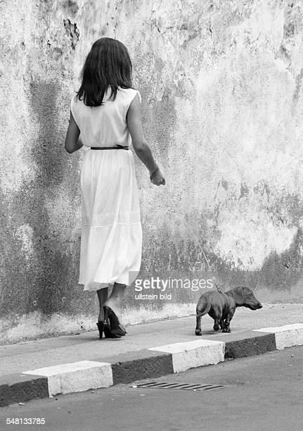 human and animal young woman walks a dachshund on a lead aged 25 to 35 years domestic dog Canis lupus familiaris Spain Canary Islands Canaries...