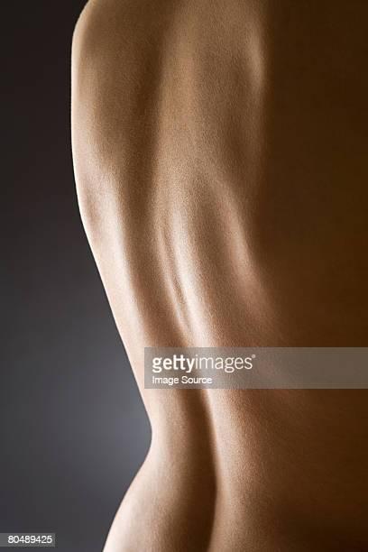 human back - donna schiena nuda foto e immagini stock